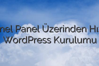 CPanel Panel Üzerinden Hızlıca WordPress Kurulumu