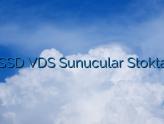 SSD VDS Sunucular Stokta